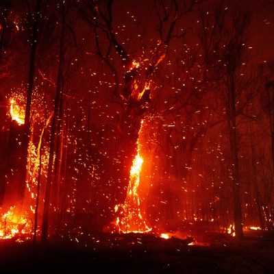 Australian Bushfires, 13th Of January